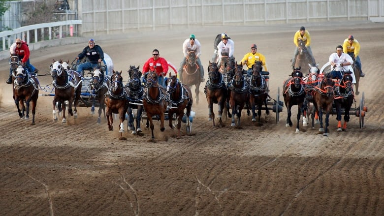 Calgary Stampede Chuckwagon Experience for four