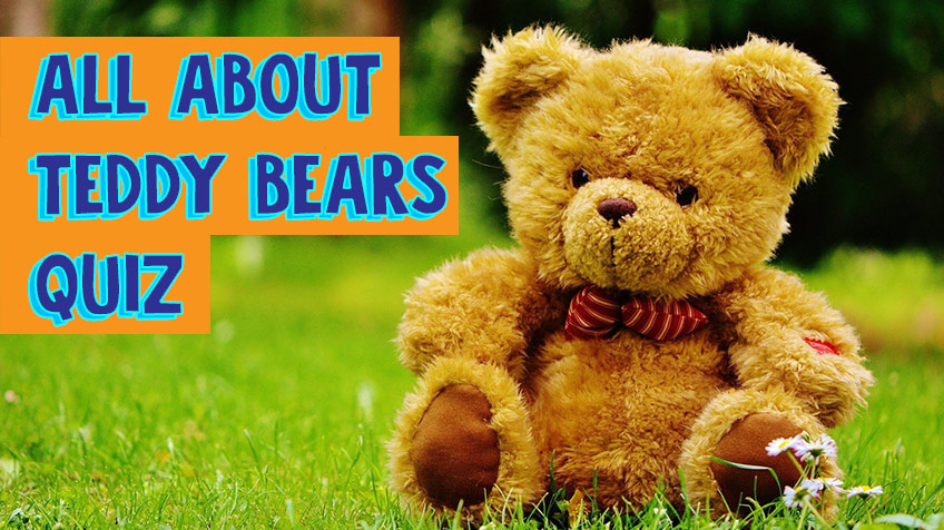 All about teddy bears quiz