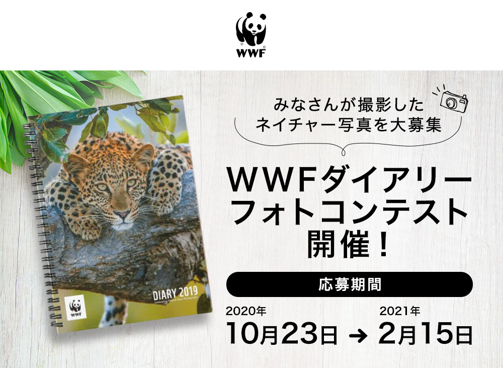 WWFダイアリーフォトコンテスト